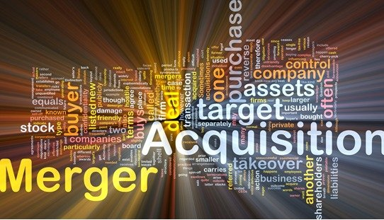 5 THINGS YOU MUST DO IN PREPARATION FOR A MERGERS ACQUISITIONS TRANSACTION